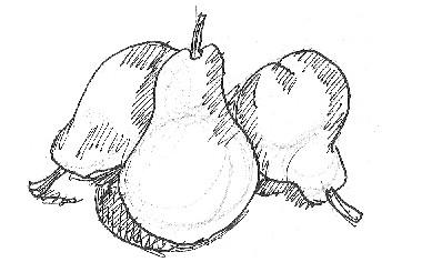 dibuix-pera
