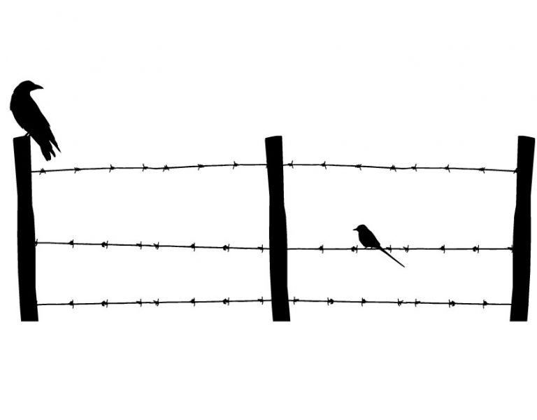 Best-barb-wire-fence